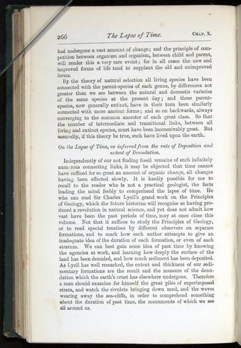 Image of Darwin-F401-1876-266