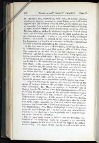 Image of Darwin-F401-1876-280