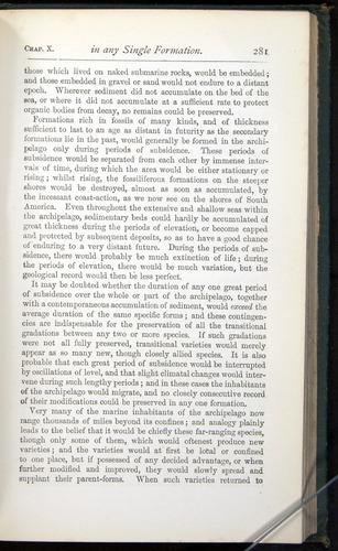 Image of Darwin-F401-1876-281