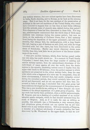 Image of Darwin-F401-1876-284