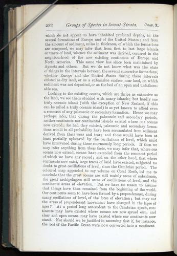 Image of Darwin-F401-1876-288