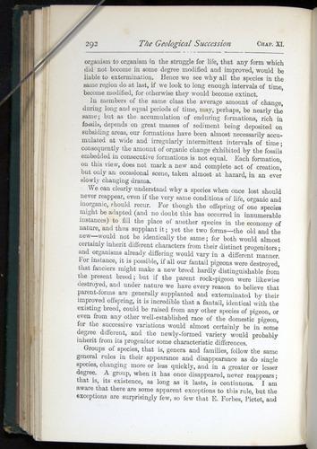 Image of Darwin-F401-1876-292