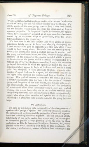 Image of Darwin-F401-1876-293