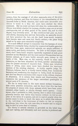 Image of Darwin-F401-1876-295