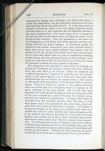 Image of Darwin-F401-1876-296