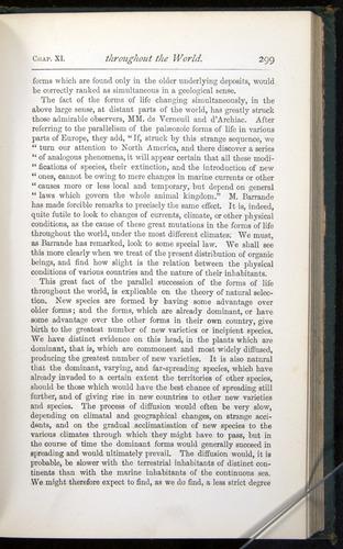 Image of Darwin-F401-1876-299