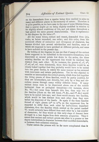 Image of Darwin-F401-1876-304