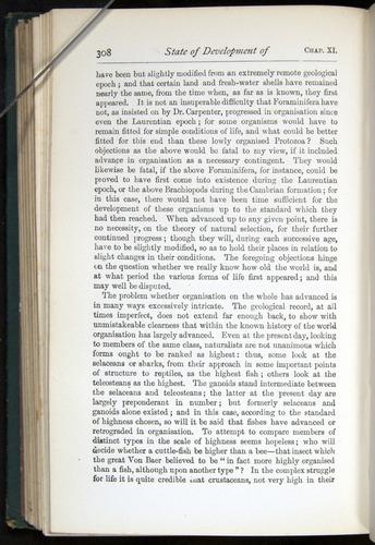 Image of Darwin-F401-1876-308