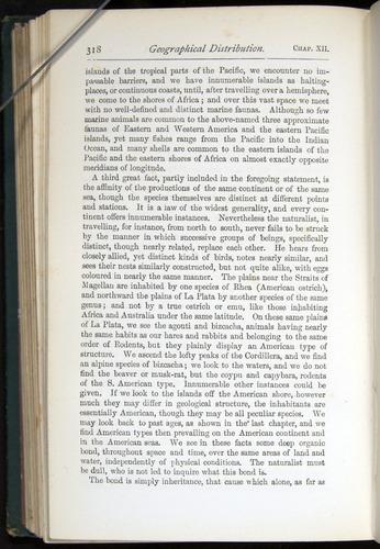 Image of Darwin-F401-1876-318