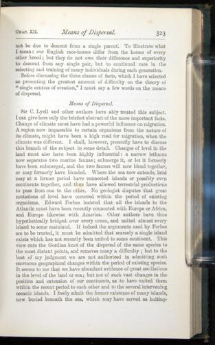 Image of Darwin-F401-1876-323