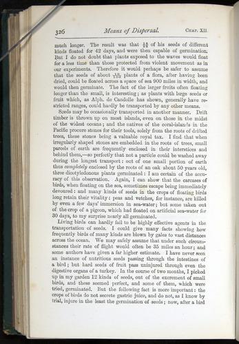 Image of Darwin-F401-1876-326