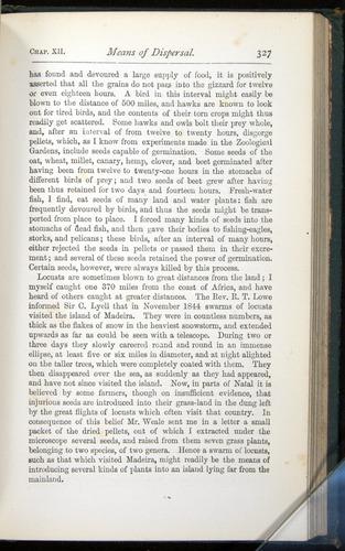 Image of Darwin-F401-1876-327