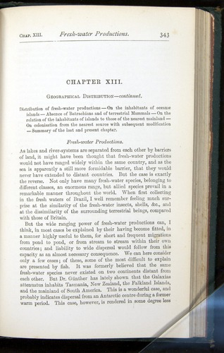 Image of Darwin-F401-1876-343