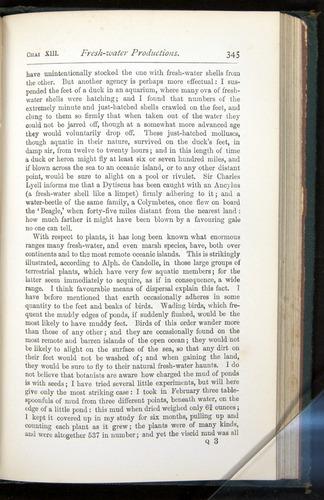 Image of Darwin-F401-1876-345
