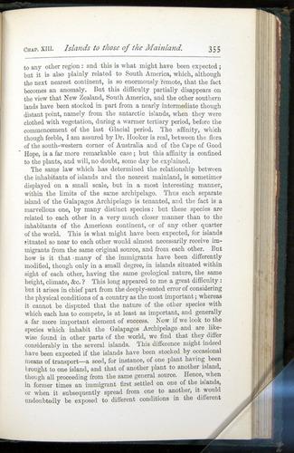 Image of Darwin-F401-1876-355
