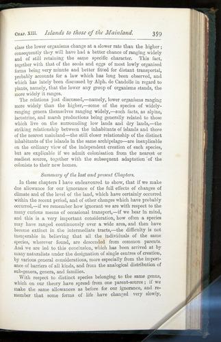 Image of Darwin-F401-1876-359