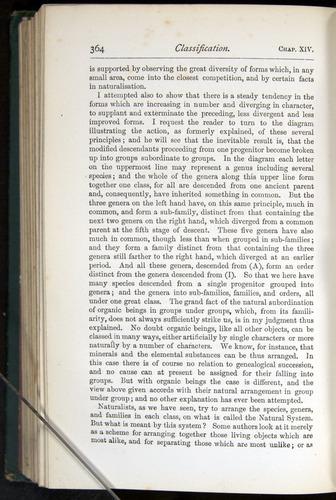 Image of Darwin-F401-1876-364