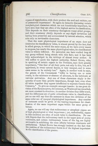 Image of Darwin-F401-1876-366