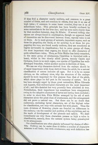 Image of Darwin-F401-1876-368