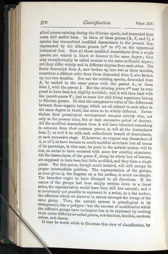 Image of Darwin-F401-1876-370