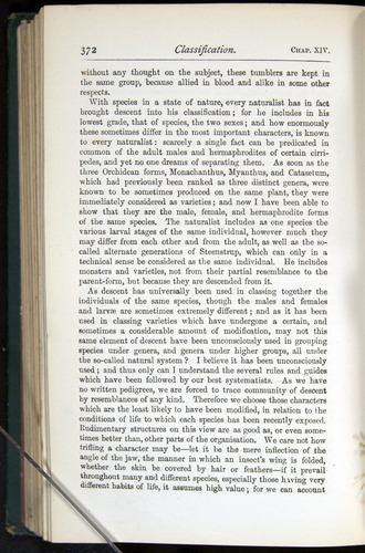 Image of Darwin-F401-1876-372