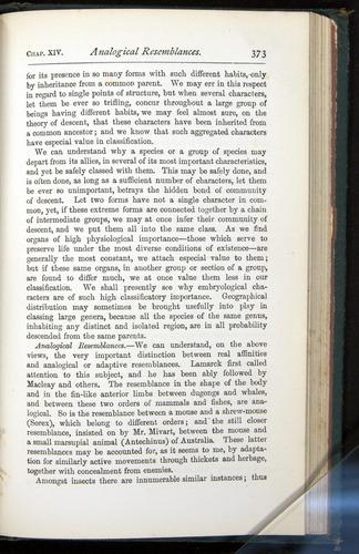 Image of Darwin-F401-1876-373