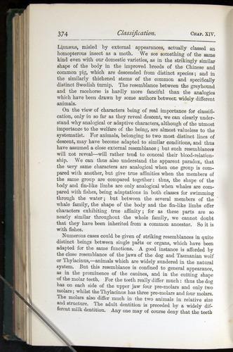 Image of Darwin-F401-1876-374