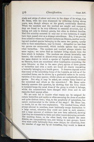 Image of Darwin-F401-1876-376