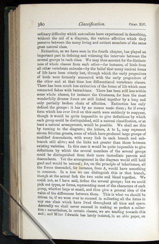 Image of Darwin-F401-1876-380