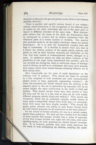 Image of Darwin-F401-1876-384