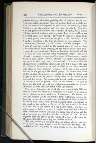 Image of Darwin-F401-1876-388