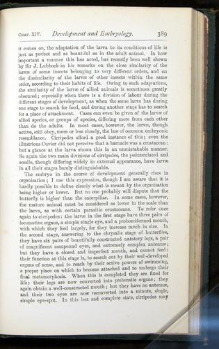 Image of Darwin-F401-1876-389