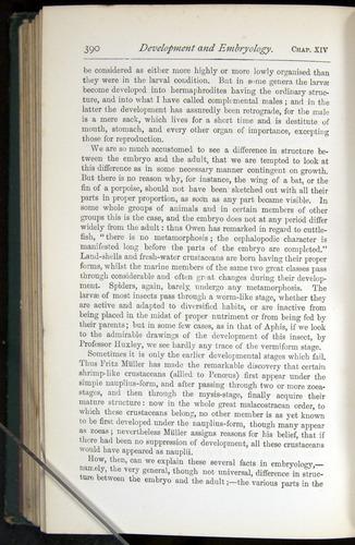 Image of Darwin-F401-1876-390