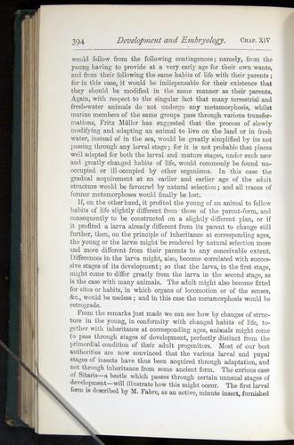 Image of Darwin-F401-1876-394