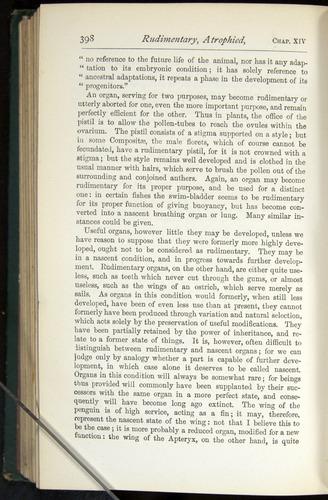Image of Darwin-F401-1876-398