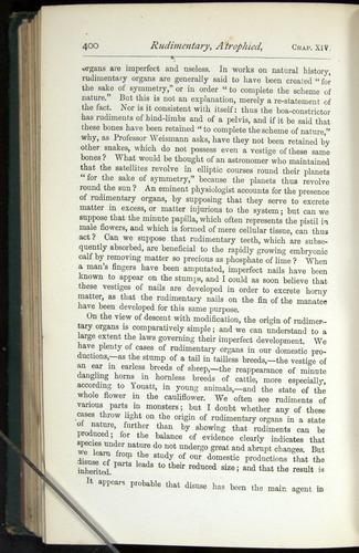 Image of Darwin-F401-1876-400