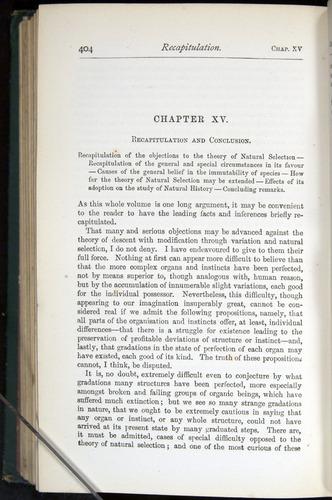 Image of Darwin-F401-1876-404