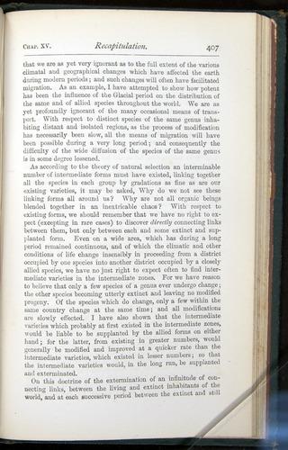 Image of Darwin-F401-1876-407