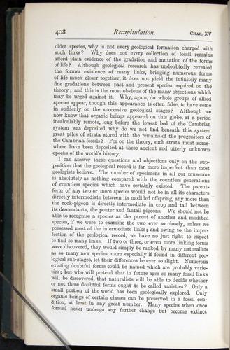 Image of Darwin-F401-1876-408