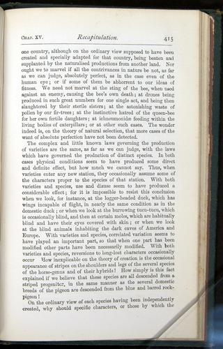 Image of Darwin-F401-1876-415