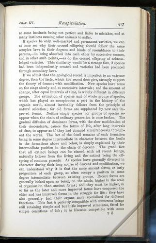 Image of Darwin-F401-1876-417