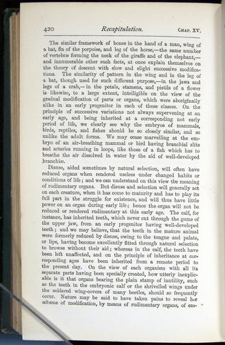 Image of Darwin-F401-1876-420