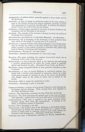 Image of Darwin-F401-1876-431