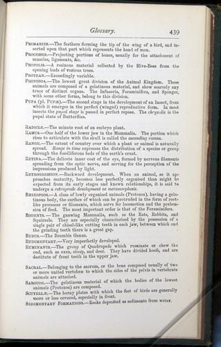 Image of Darwin-F401-1876-439