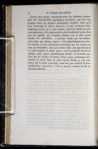 Image of Darwin-F656-1866-00014