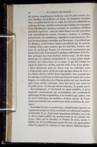 Image of Darwin-F656-1866-00020
