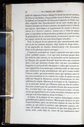 Image of Darwin-F656-1866-00026