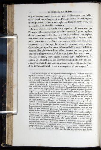 Image of Darwin-F656-1866-00036