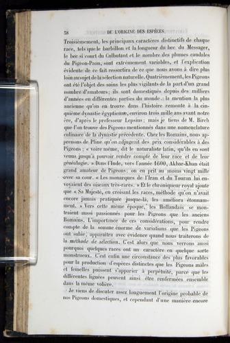 Image of Darwin-F656-1866-00038