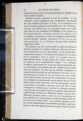 Image of Darwin-F656-1866-00056